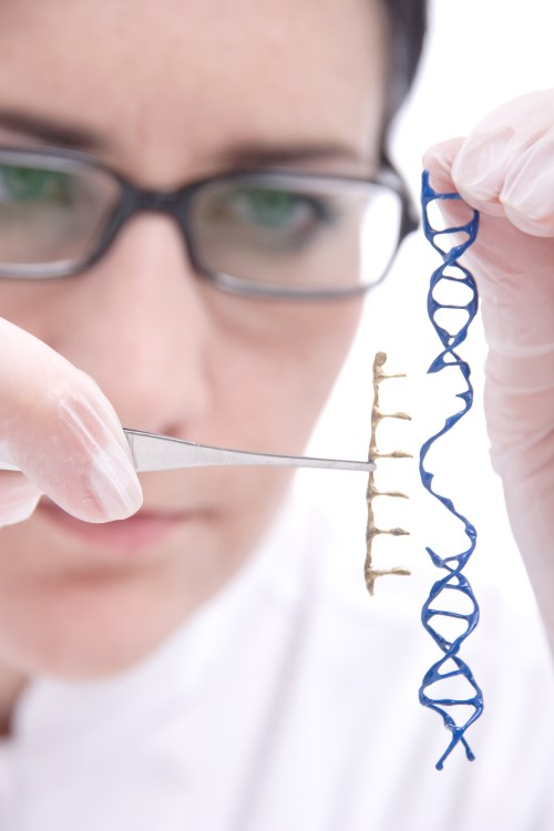 DNA-Analyse für die Ahnenforschung